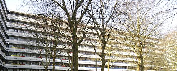 Sinclair Lewisplaats Rotterdam Groot onderhoud